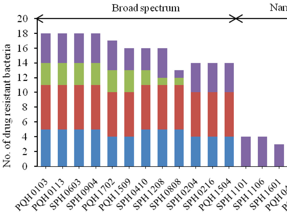 Antagonistic pattern of 20 Bacillus sensu lato strains against drug-resistant bacteria