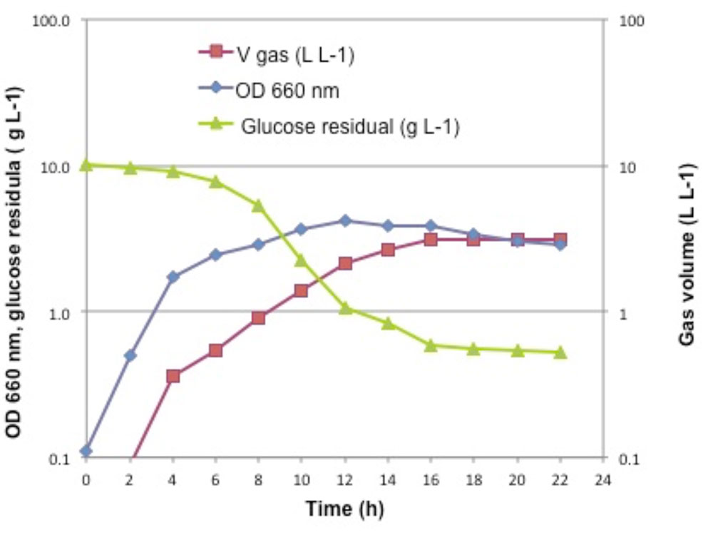 Capability of growth, hydrogen production, glucose consumption of strain Tr2 under optimal condition dark fermentation in automatic fermenter system