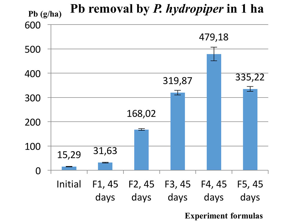 Potential for treatment of 1 ha of Pb contam- inated soil after 45 days of planting P. hydropiper