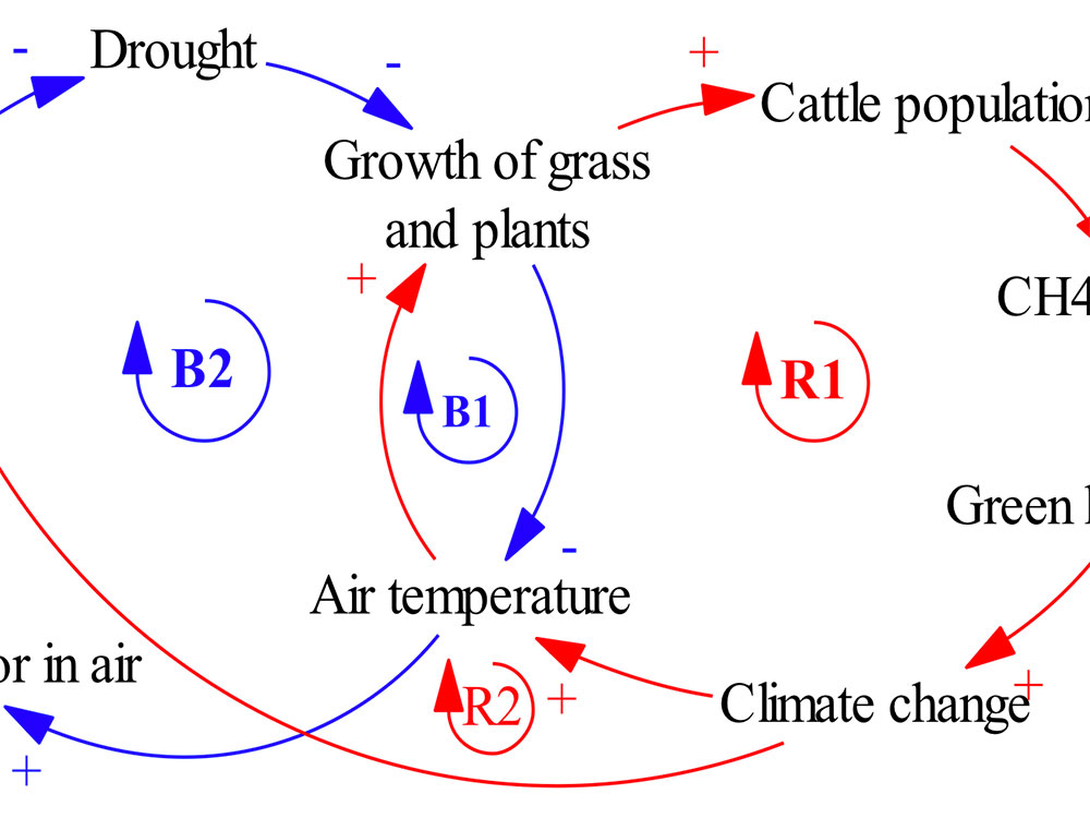 Example of causal loop diagrams for the interrelationships between cattle population and air temperature