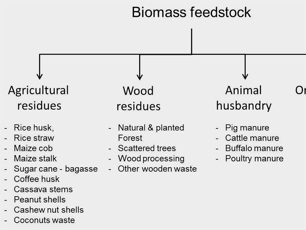 Potential sources of biomass for power generation